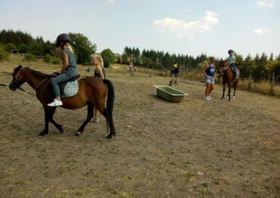 Ponyrijden in de bak
