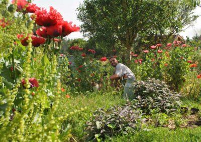 Tuin vakantiehuis La Source, Brénazet, Allier, Frankrijk