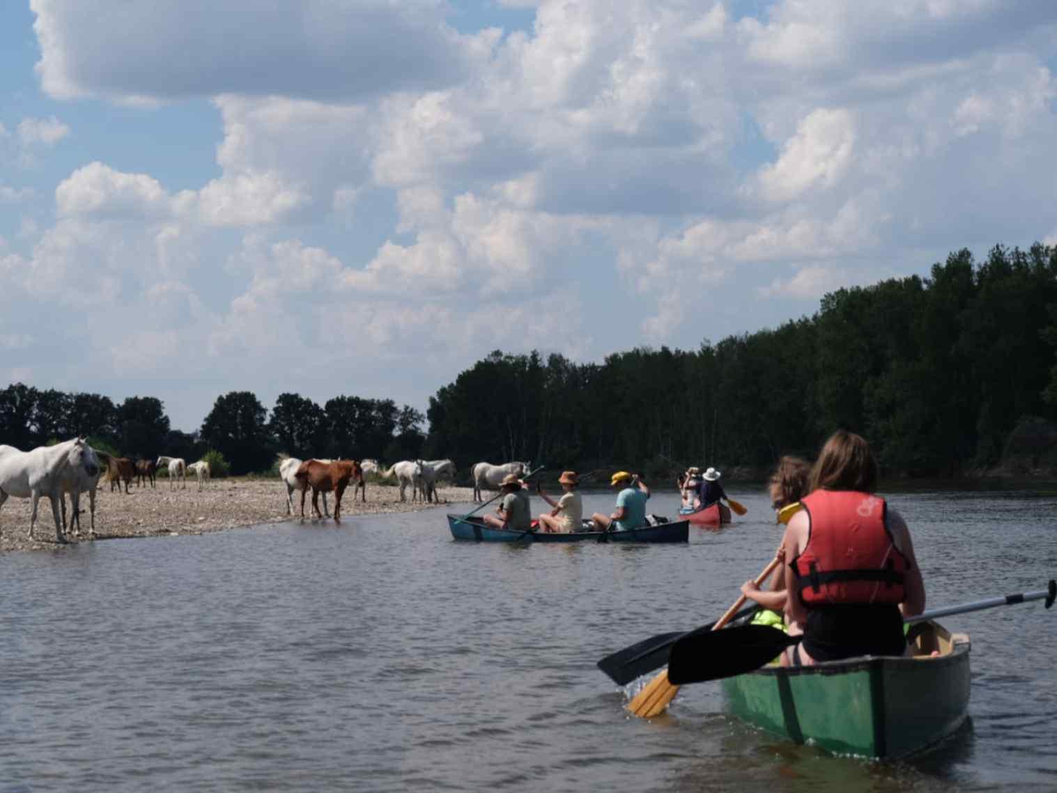Activiteiten Brénazet, kanovaren op de Allier